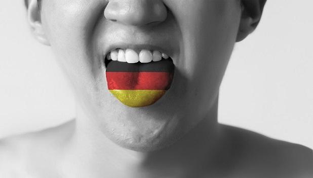Fokus Tysk fls