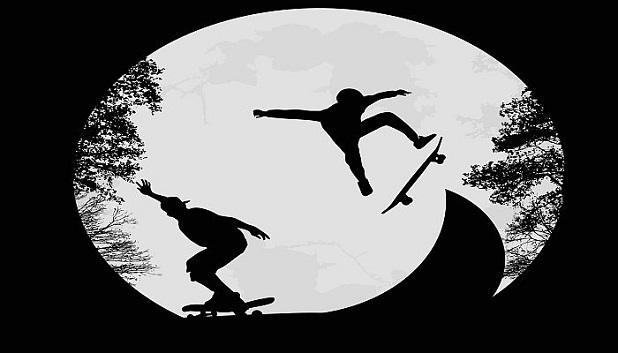 Skate Denmark fls